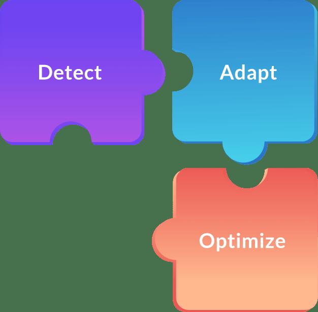 Detect Adapt Optimize